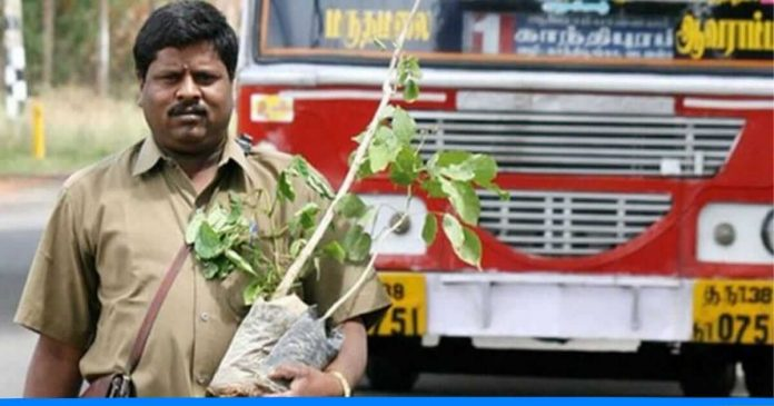 bus conductor turned tree man
