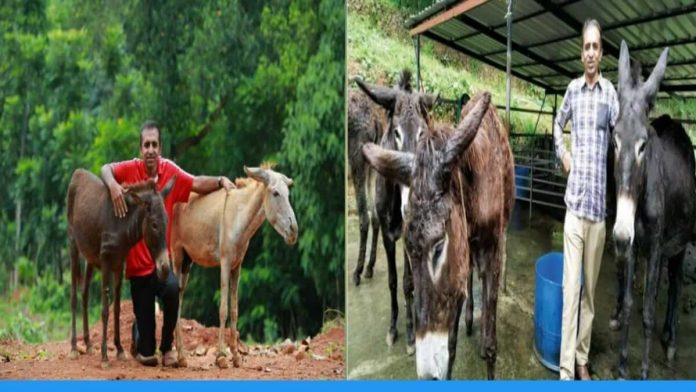 Aby Baby is doing business of cosmetic items from donkey milk