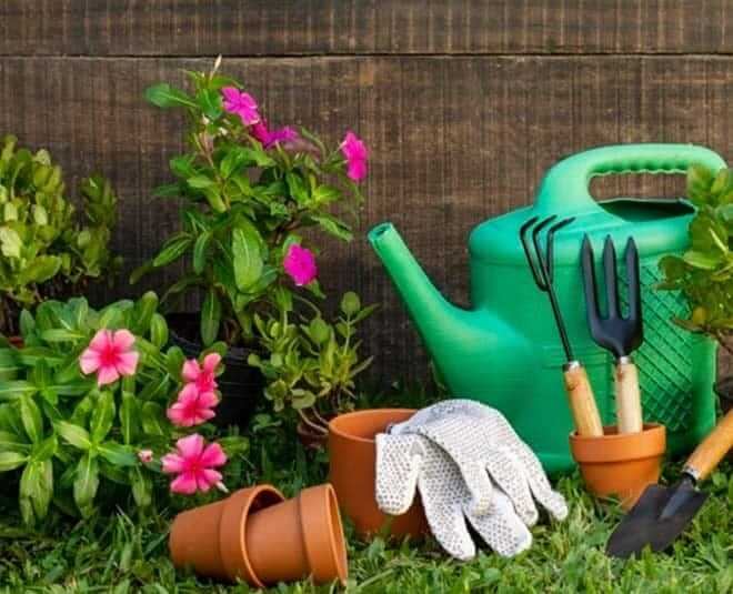 methods to protect plants in monsoon