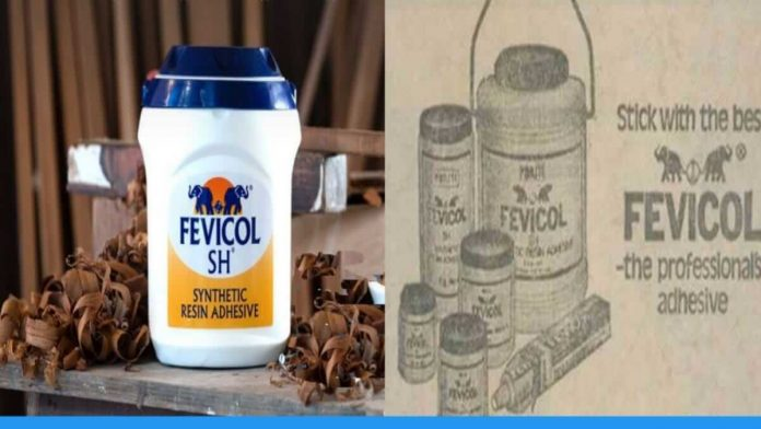 know the history behind the establishment of fevicol company