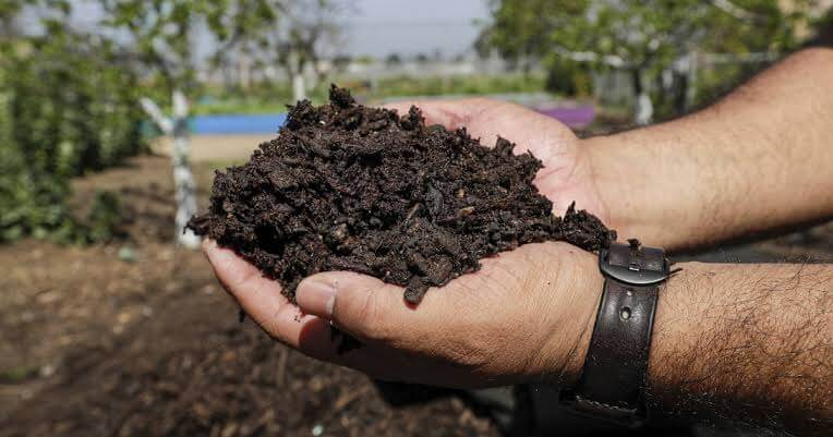 easily make compost from kitchen waste