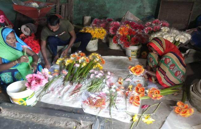 After leaving 80 lakh pakage from Britain this boy is doing gerbera flower farming